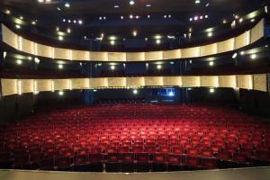Stadsschouwburg Nijmegen en Concertgebouw De Vereening theaterzaal
