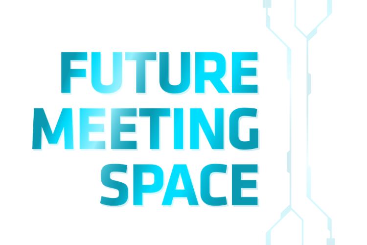 Future Meeting Space research project